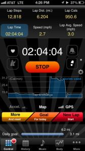 The pedometer screen